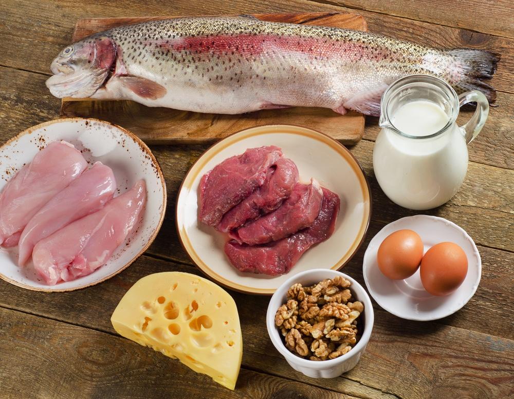 Benefícios dos alimentos proteicos