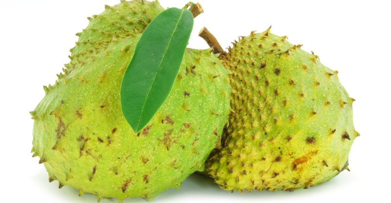 Picture Of A Soursop Fruit