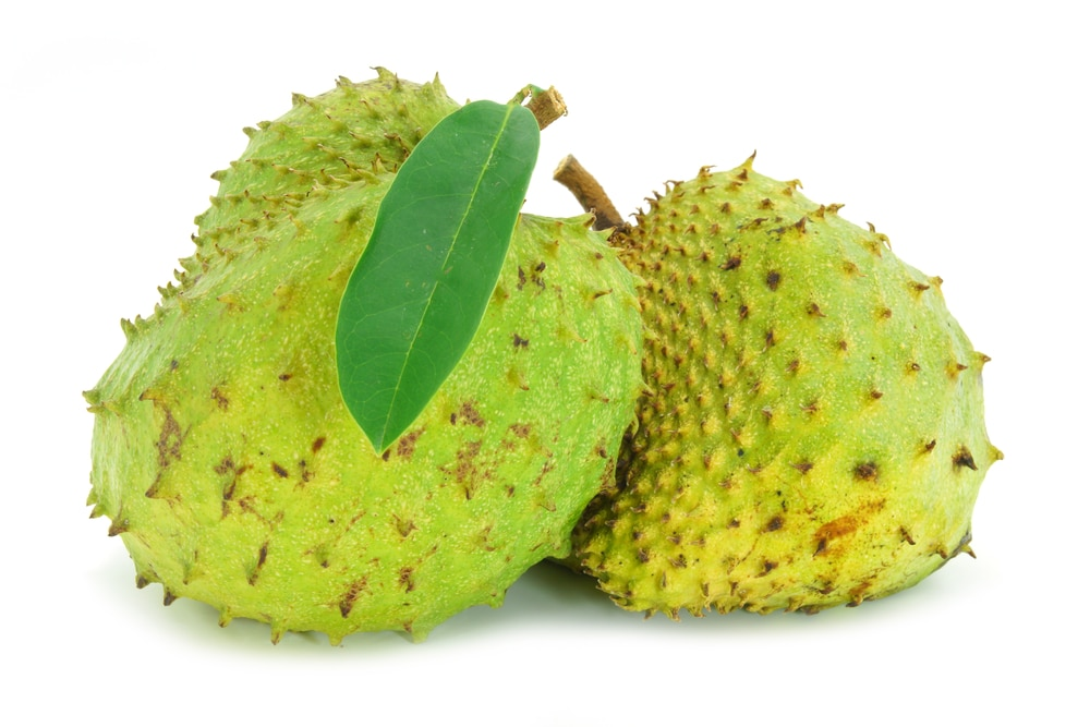 11 Impressive Benefits of Soursop (Guanabana) - Natural Food Series