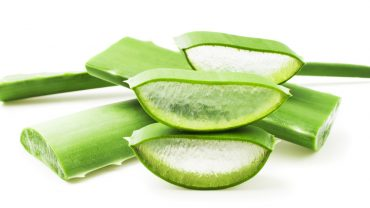 15 Surprising Health Benefits of Aloe Vera