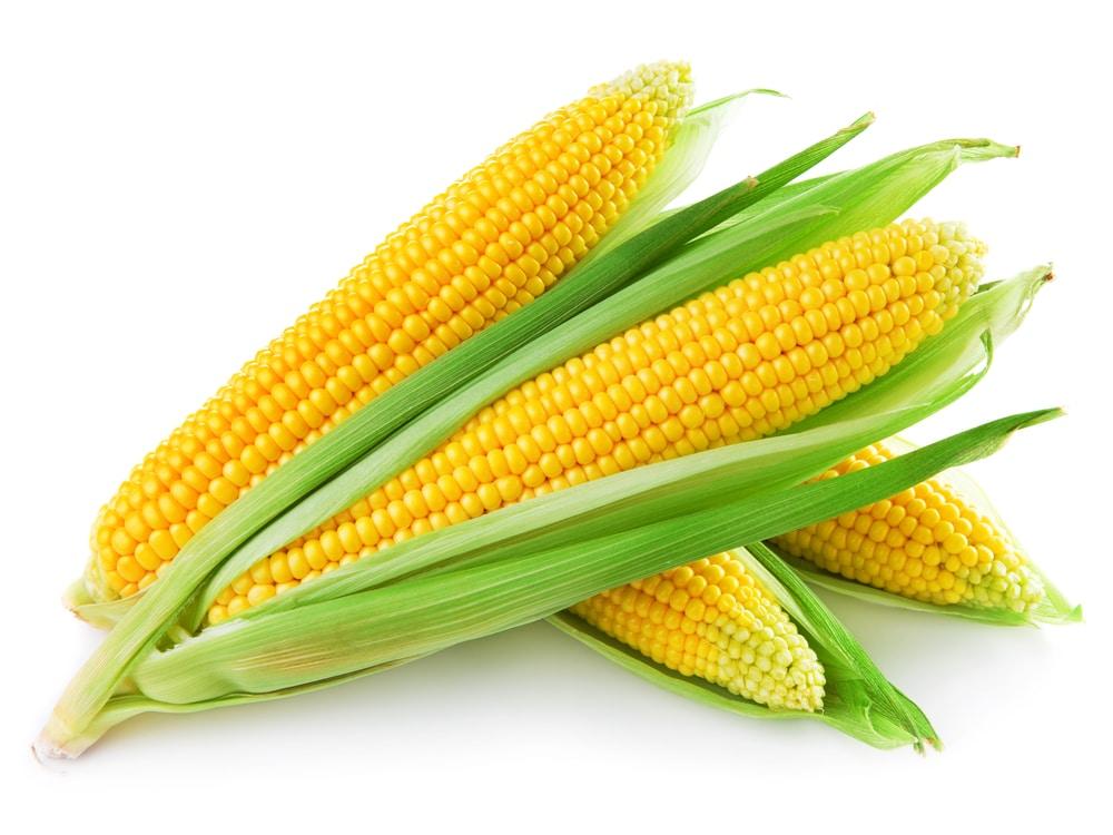 Benefícios para a saúde do milho