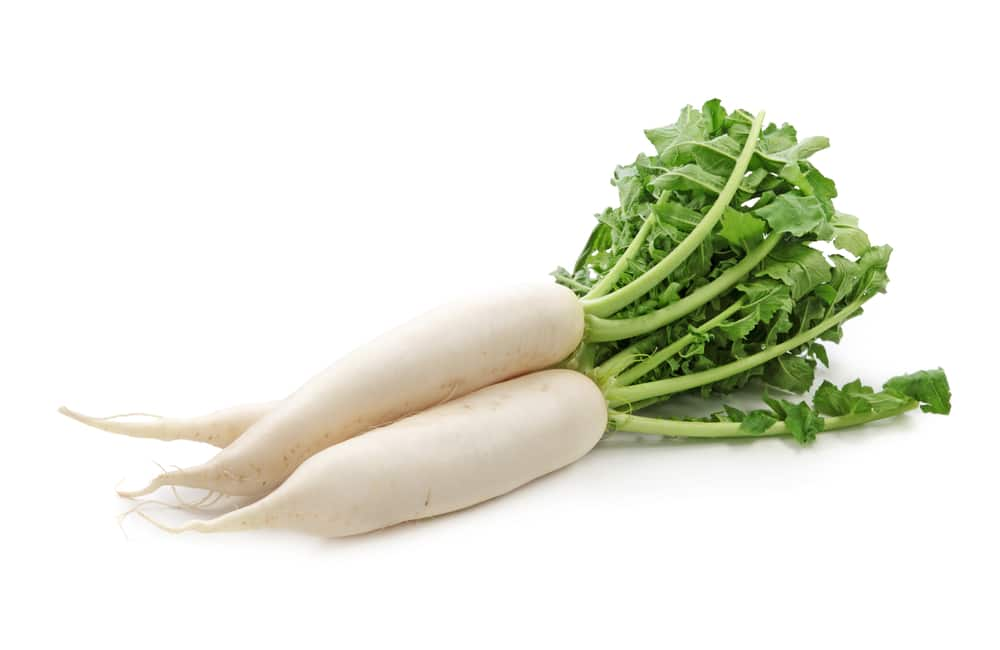11 Amazing Health Benefits of Daikon
