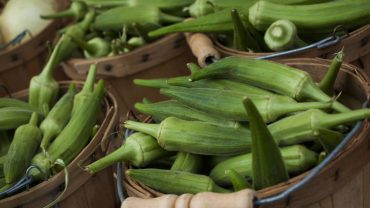 Okra health benefits