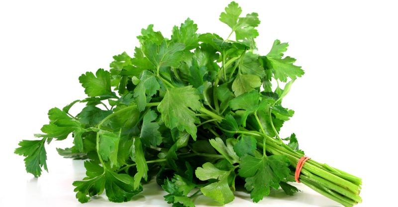 11 amazing health benefits of parsley natural food series