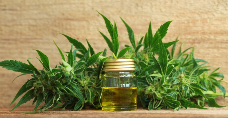 11 Surprising Health Benefits of Cannabis Essential Oil