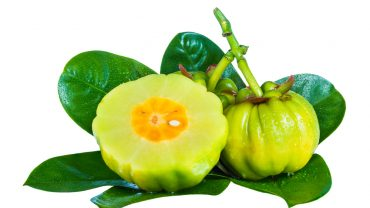 Benefits of Garcinia Cambogia