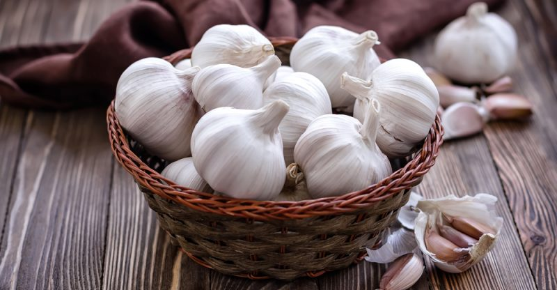 Garlic Food For Good Liver