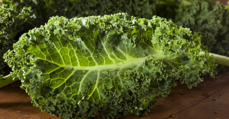 What benefits does kale have