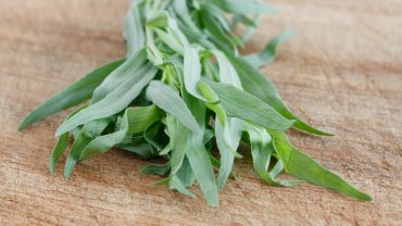 13 Amazing Health Benefits of Tarragon