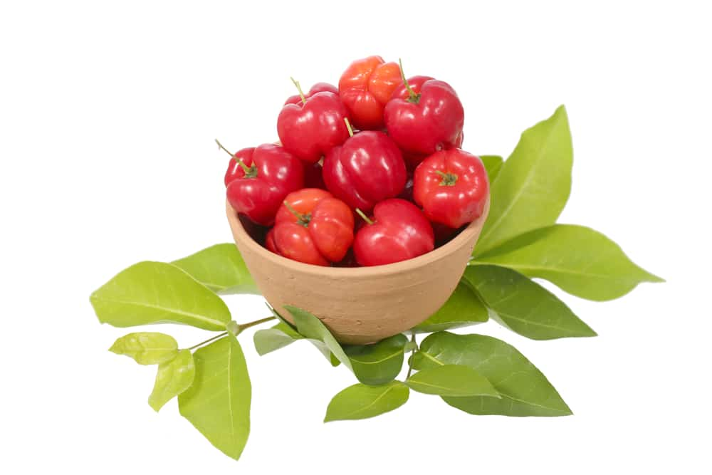 11 Amazing Health Benefits of Acerola