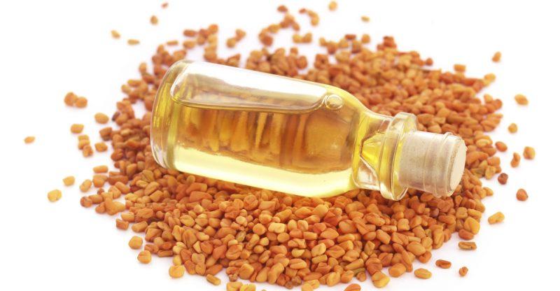 11 Amazing Benefits of Fenugreek Essential Oil