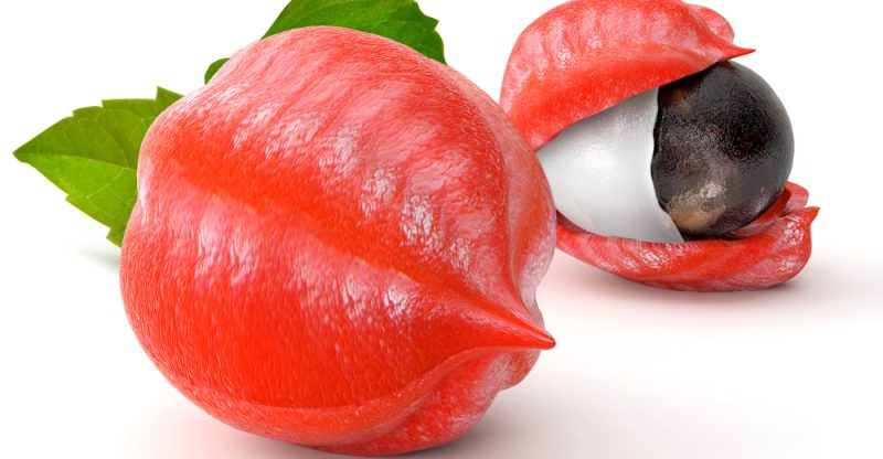 11 Amazing Health Benefits of Guarana