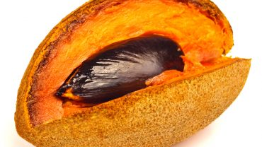 11 Amazing Health Benefits of Mamey Sapote