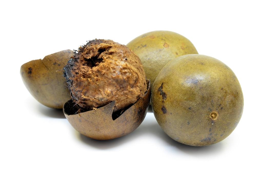 Benefícios para a saúde da fruta monge
