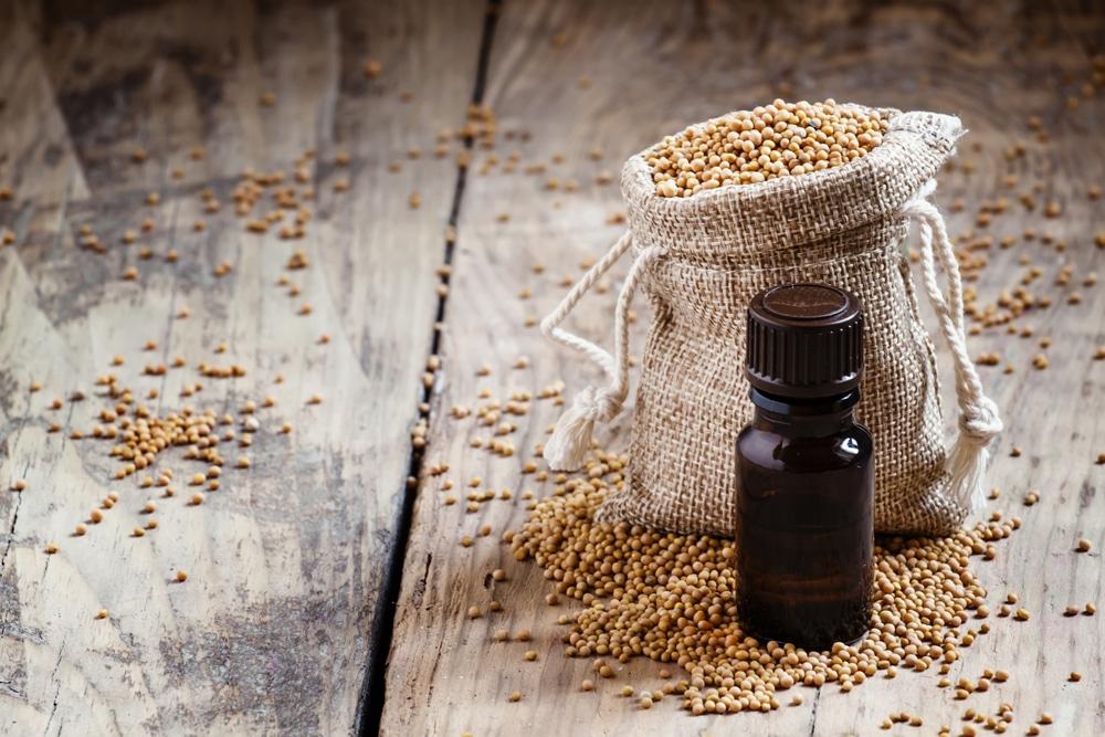 Mustard Essential Oil benefits