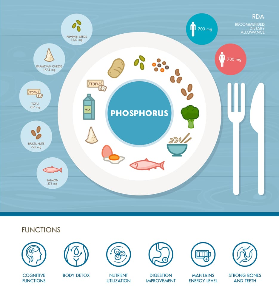 11 Amazing Health Benefits of Phosphorus
