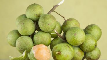 13 Amazing Health Benefits of Quenepas