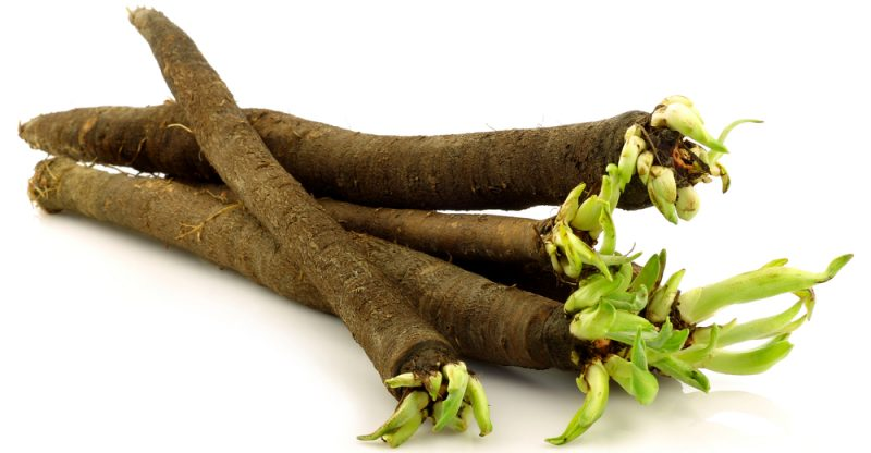 Salsify health benefits