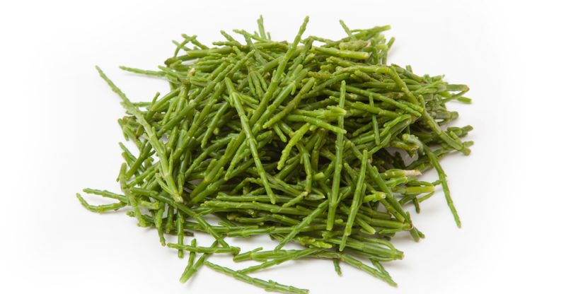 11 Amazing Health Benefits of Samphire
