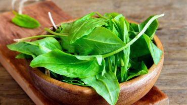 13 Impressive Benefits Of Sorrel