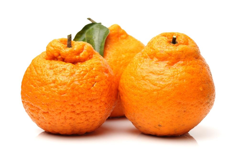 11 Impressive Benefits of Ugli Fruit