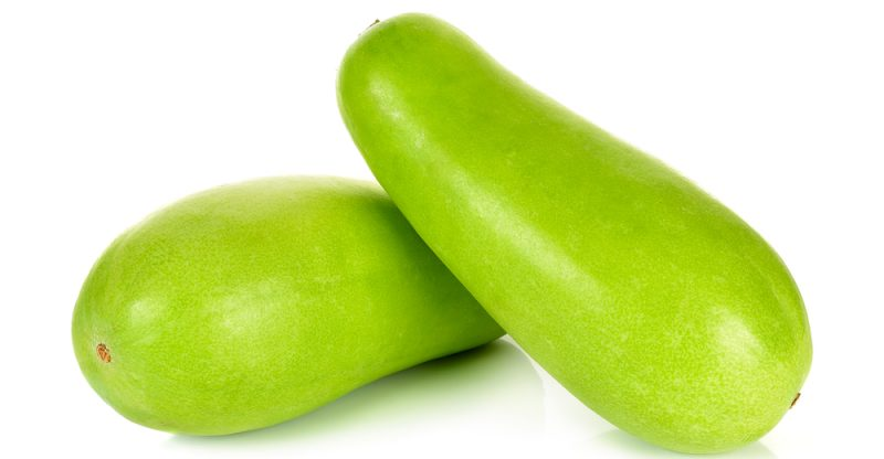 Winter Melon health benefits