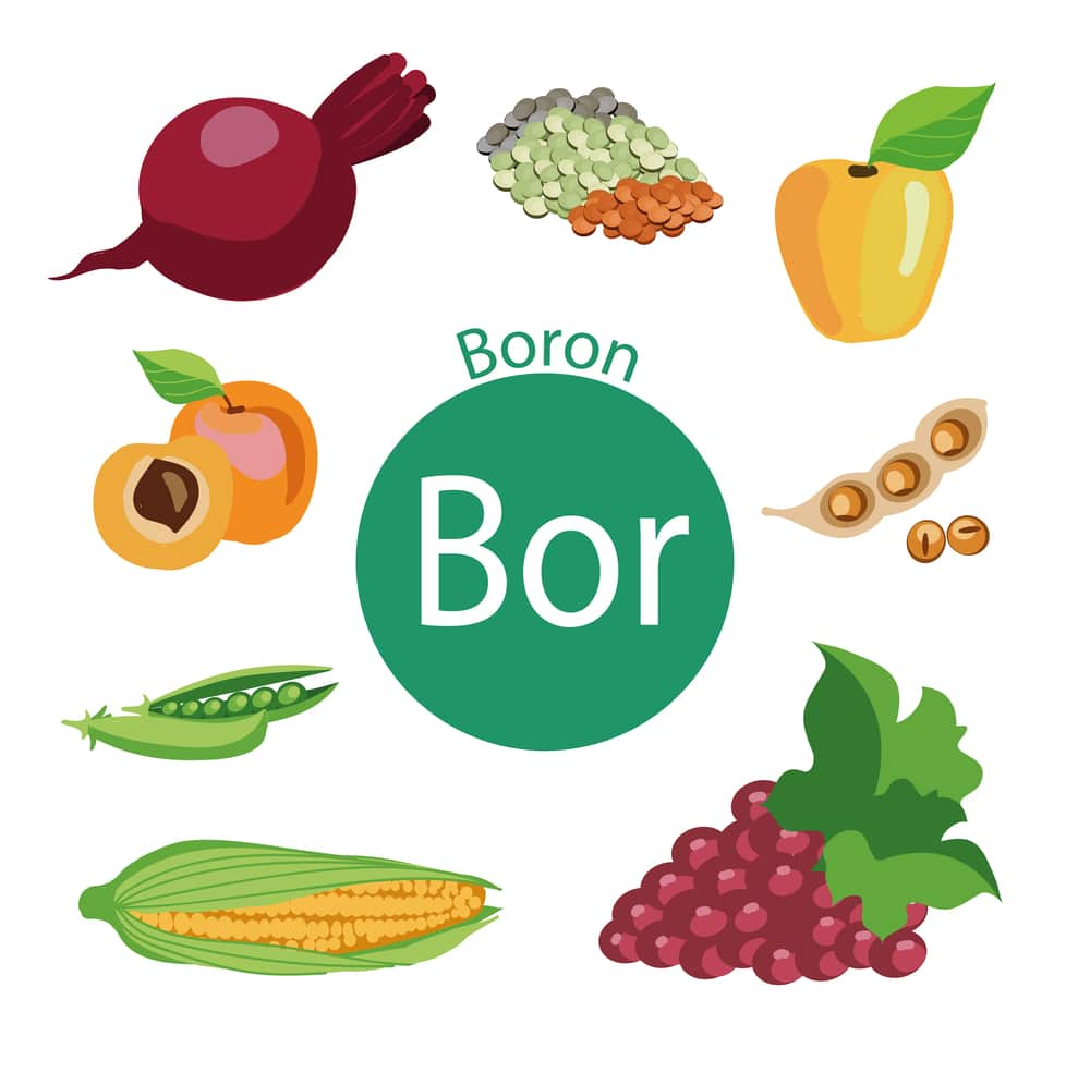 Boron in food