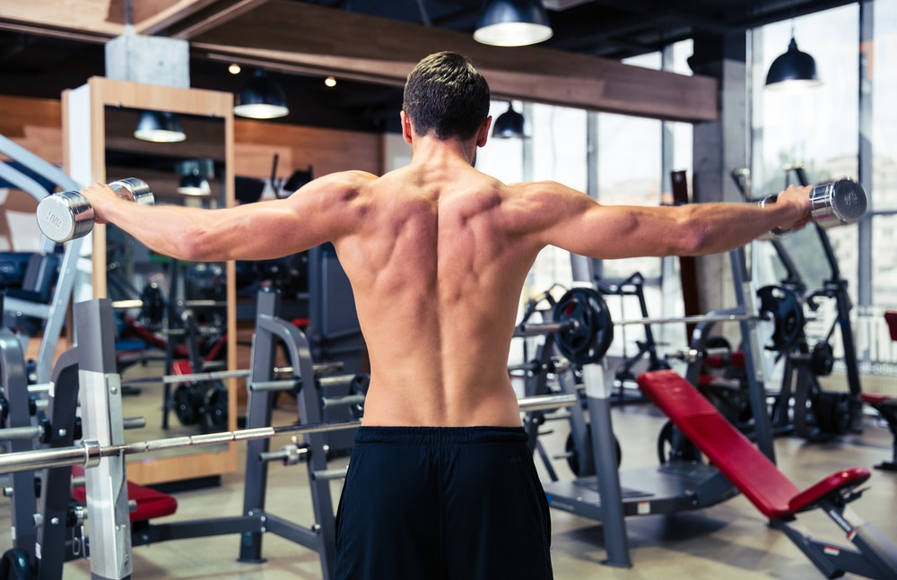 Muscle body building