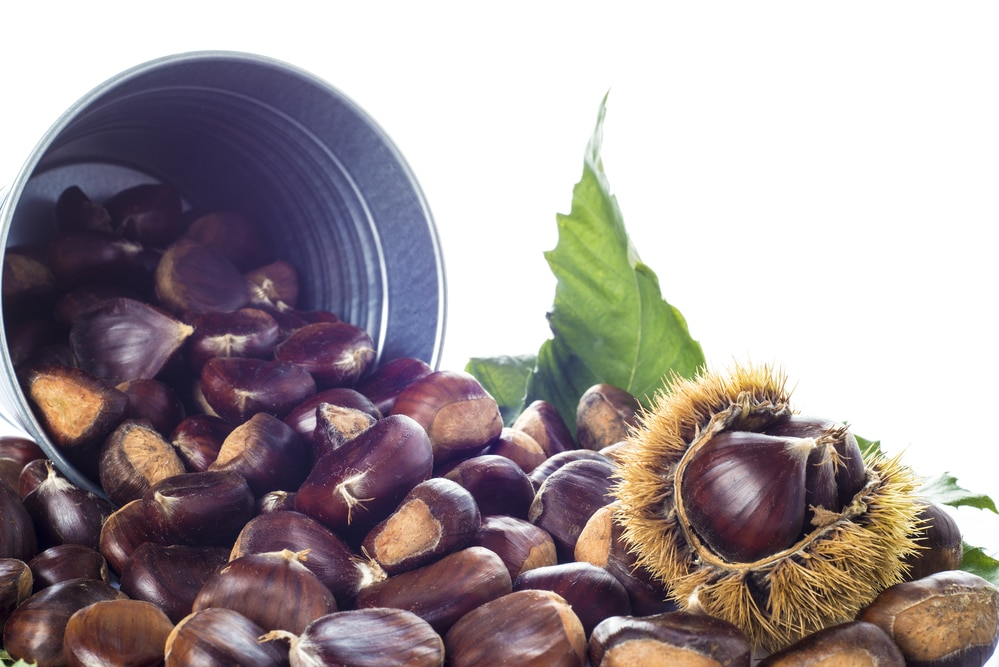 11 impressive benefits of Chestnuts