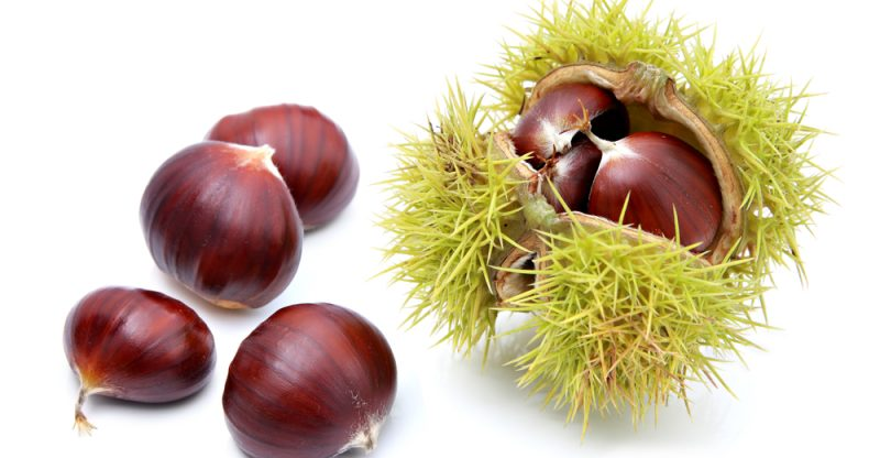 Chestnuts health benefits