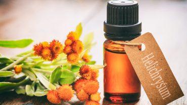 13 Amazing Benefits of Helichrysum Essential Oil
