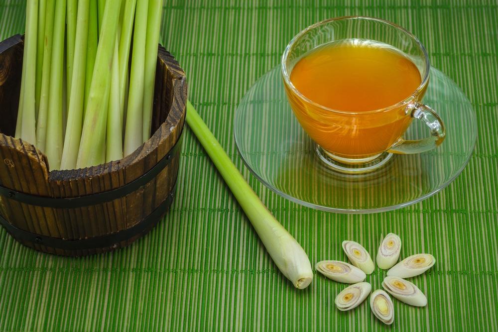 Benefícios para saúde surpreendentes do chá de capim-limão