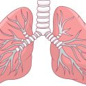 15 Best and Worst Foods for Your Lungs