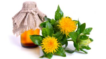 11 Amazing Health Benefits of Safflower Oil