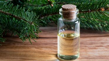 13 Health Benefits of Spruce Essential Oil