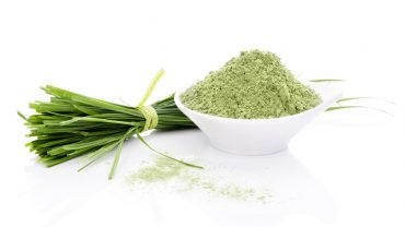 11 Amazing Health Benefits of Barley Grass