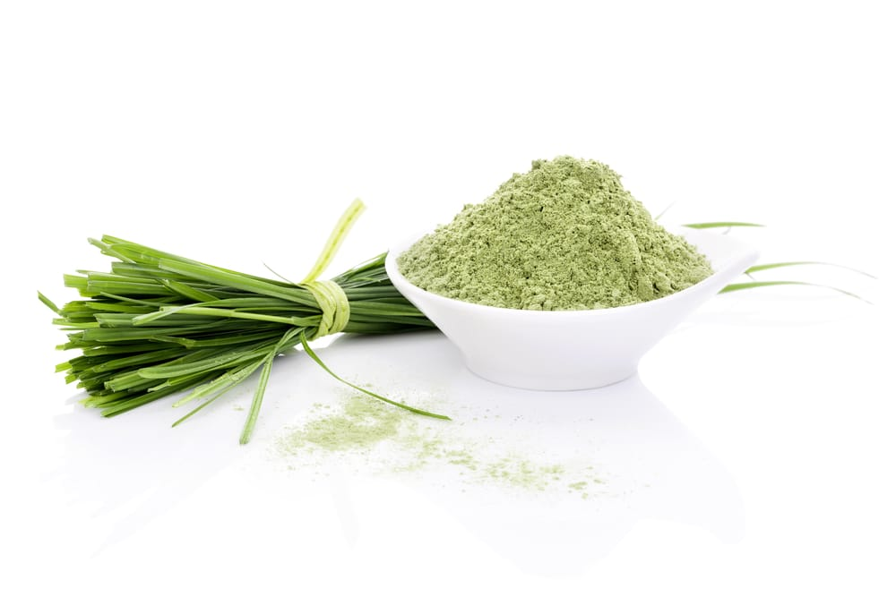 11 Amazing Health Benefits of Barley Grass