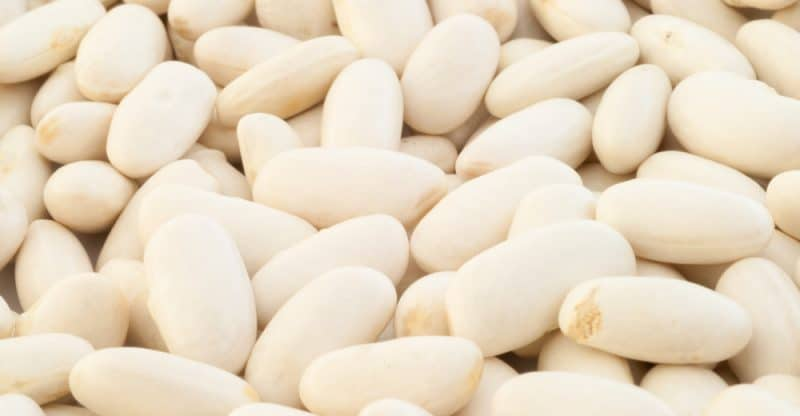 11 Amazing Health Benefits of Cannellini Beans