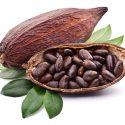 13 Impressive Health Benefits of Cocoa