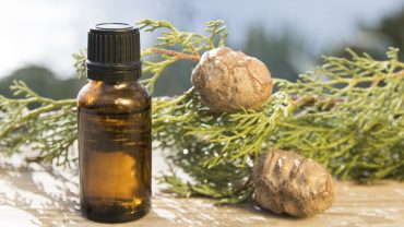 11 Amazing Benefits Of Cypress Essential Oil