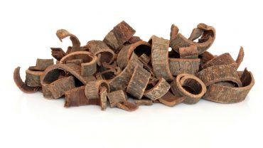 11 Incredible Health Benefits of Magnolia Bark