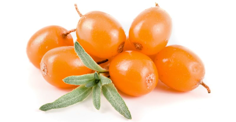 11 Amazing Health Benefits of Sea Buckthorn