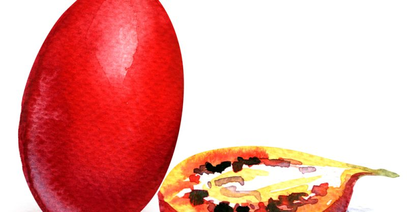 11 Amazing Health Benefits of Tamarillo