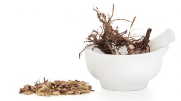 11 Incredible Health Benefits of Valerian Root