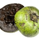 11 Amazing Health Benefits of Black Sapote