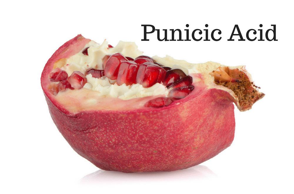 10 Health Benefits of Punicic Acid