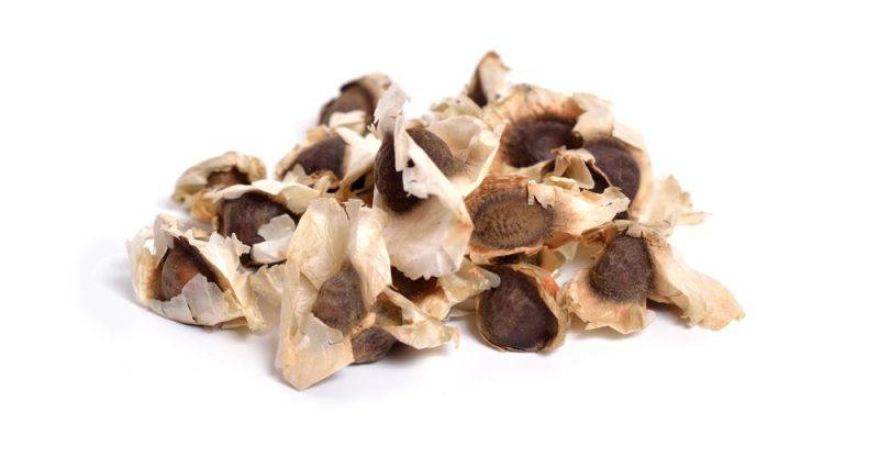 10 Health Benefits of Moringa Seeds - Natural Food Series