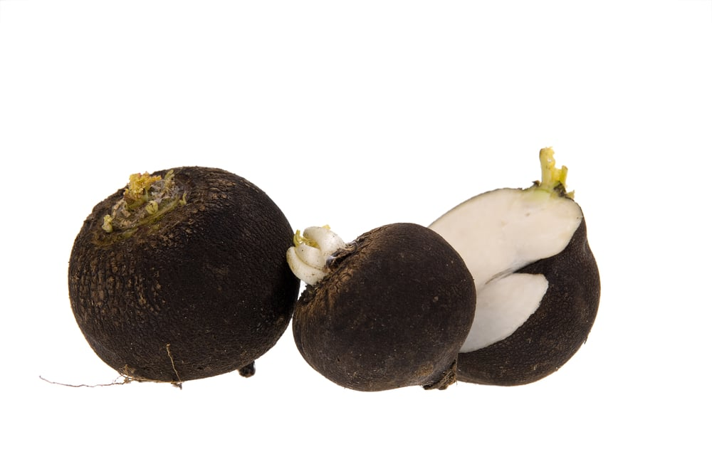 11 Impressive Benefits of Black Radish