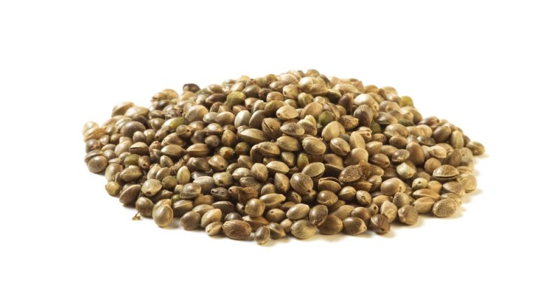 11 Amazing Health Benefits of Hemp Seeds