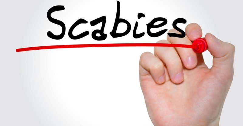 9 Natural Treatments for Scabies